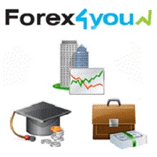 Forex 4 you partners